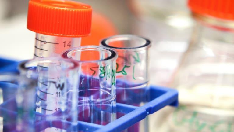 Immunotherapy Stocks Power Higher on Celgene-Juno Deal