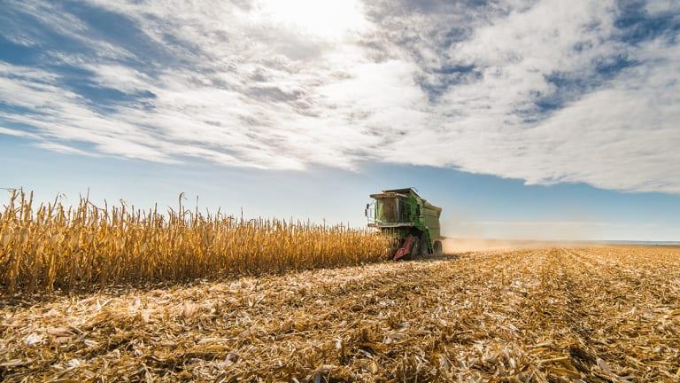 How Grain Futures Revolutionized Finance