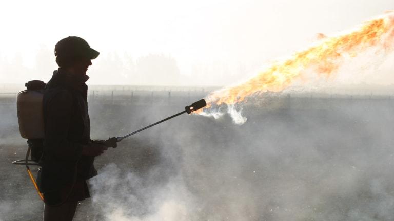 Treasury Secretary Mnuchin Throws Gas on This Hot Trade