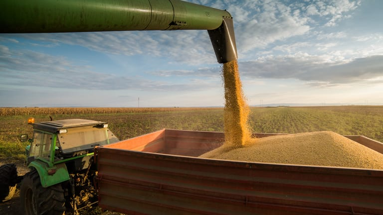 Why Soybeans Are a Proxy for the Trade War