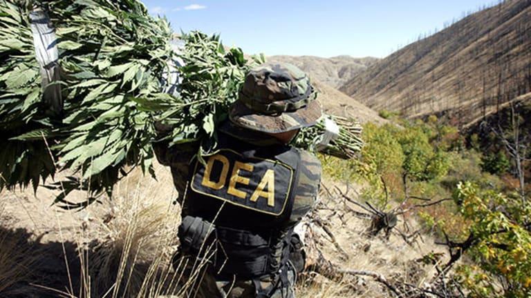 Drug Cartels Take Colorado? Drug Enforcer Backtracks