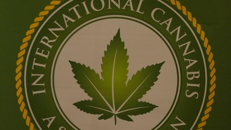 Marijuana Business Outlook 2015: Northeast Riding the Greenwave