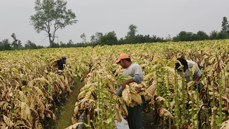 Top Labor Organizer: The South Is Not Lost, We Will Help N.C. Tobacco Workers