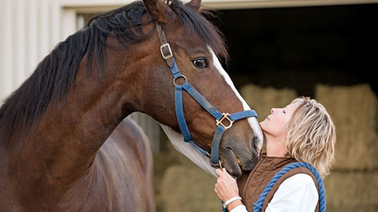 The Real Cost of a Ride: 7 Expenses First-Time Horse Owners Aren't Expecting