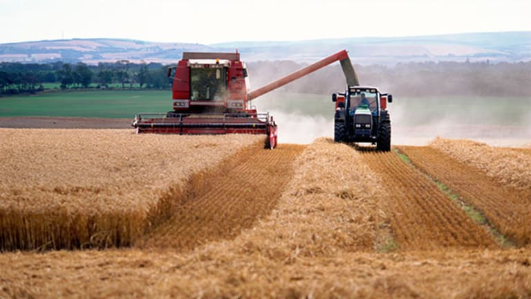 Earth May Already Be Running Out of Grain