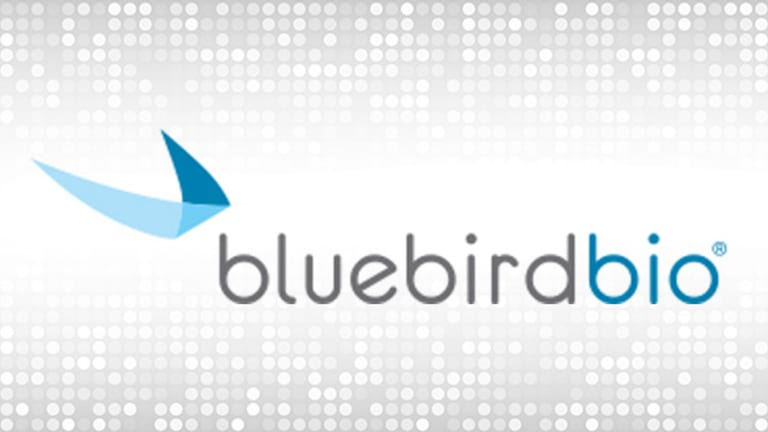 Bluebird Improves Its Gene Therapy, Removing an Investor Concern