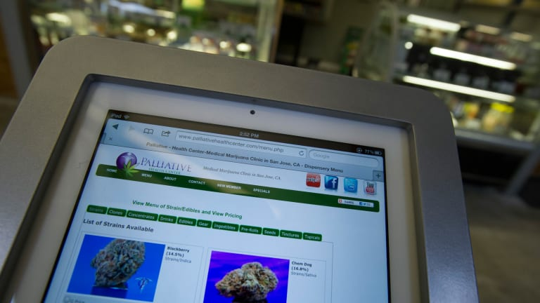 Marijuana's Horticulture High Tech Industry Is Budding in Colorado and California
