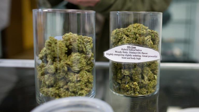 Sweeping New Marijuana Reform Bills Introduced In Congress