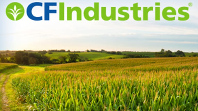 This Hugely Undervalued Ag Stock Has a 5% Dividend Yield and Big Upside Potential
