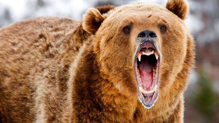 This 'Bear-Beating' Health Care Stock Could Soon Soar -- Here's Why