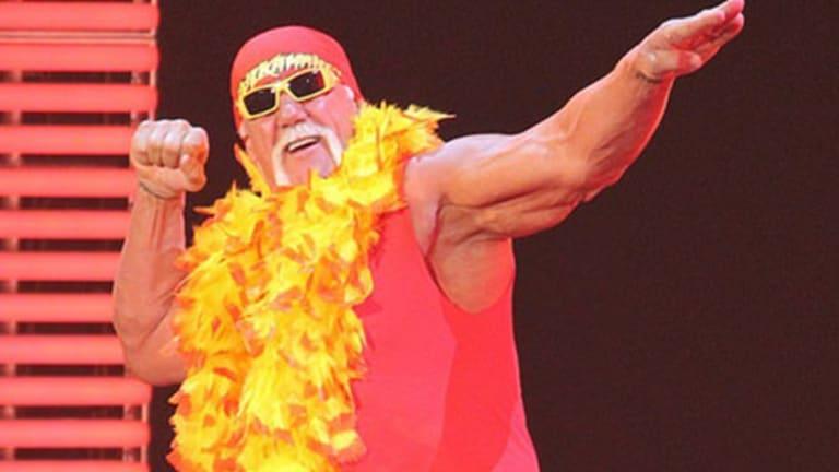As Hulk Hogan Cage Fight Heats Up, Gawker Tag Teams With Houlihan Lokey