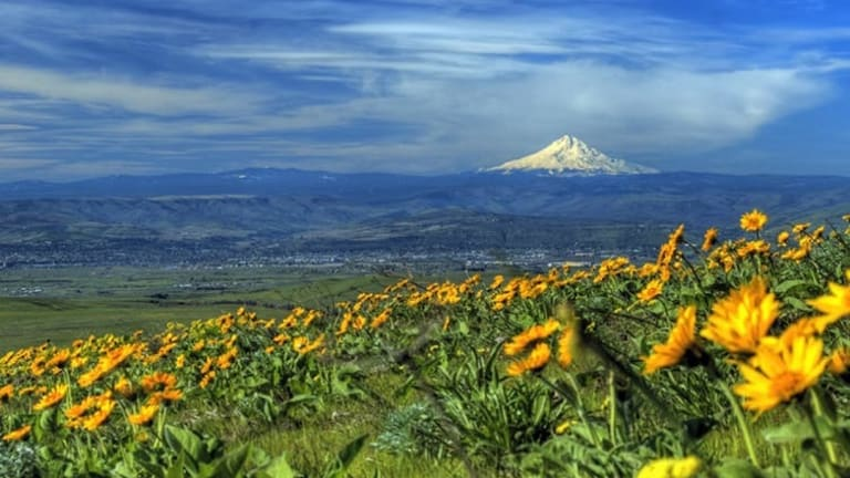 Pacific Northwest's Cascadia fault: more seismically active than others