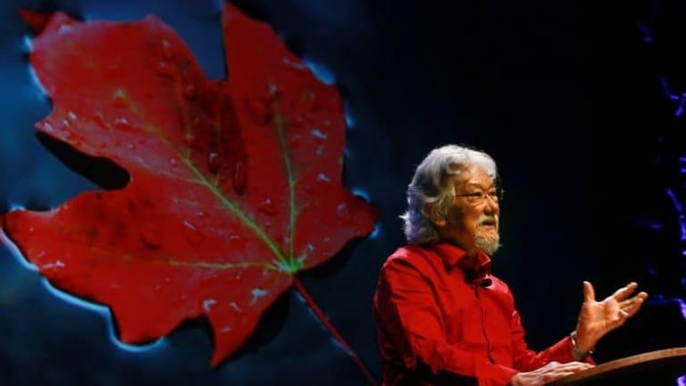 David Suzuki backlash ignores his prize-worthy science