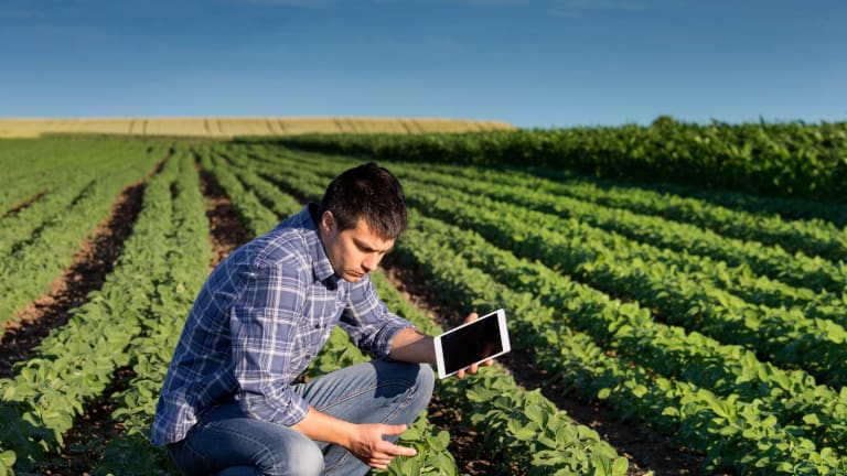 Demand for Crop Data Grows in Brazil