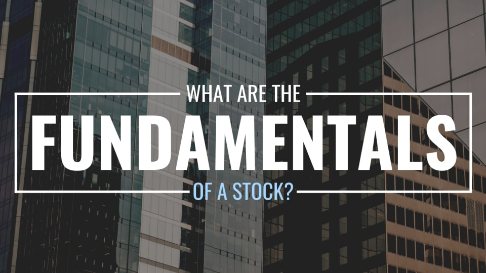 What Are Stock Fundamentals? Definition, Examples, and FAQ