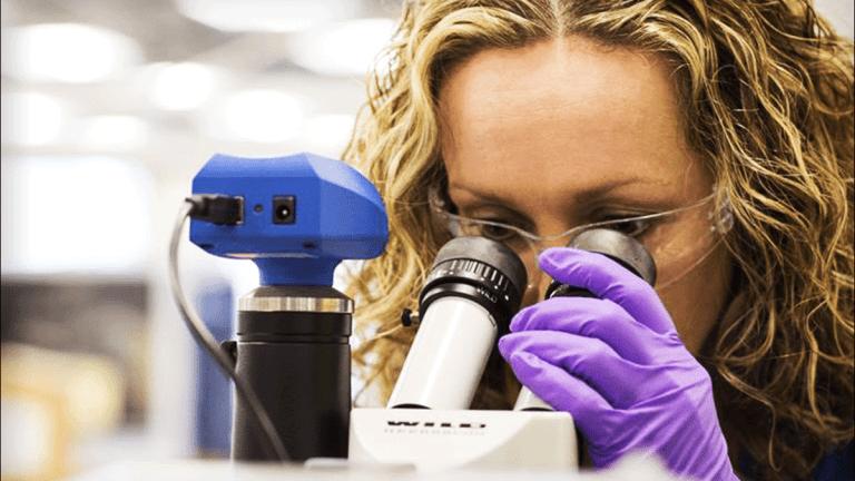 Immunomedics Stock Drops After Bladder-Cancer-Drug Results Disappoint