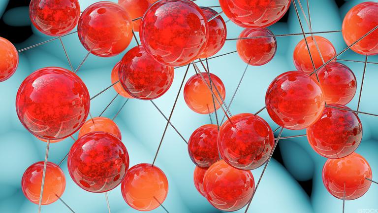 Solid Biosciences Soars 41% in IPO Despite Late Disclosure of FDA Letter
