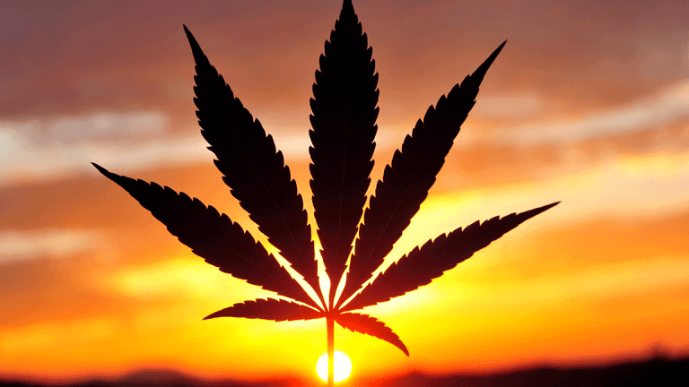 Tilray Shares Are Going Absolutely Haywire -- Here's Why