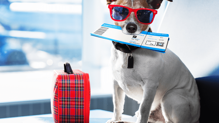 18 Ways to Make Your Holiday Travel Smoother