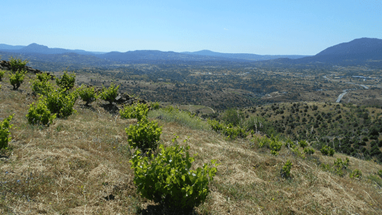 Making Wines in the Mountains Near Madrid