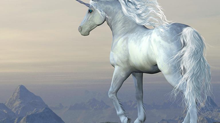 10 Biggest Unicorn Companies in the World