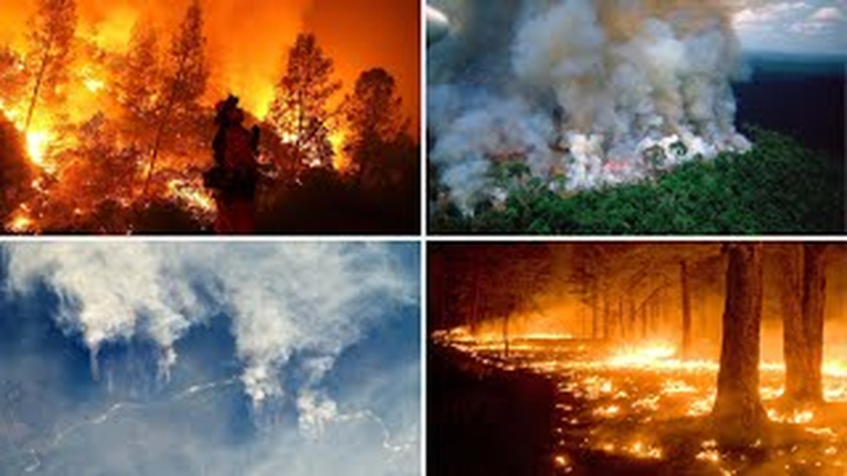 G7 Leaders Agree To $20 Million Package To Address Fires Raging In Amazon