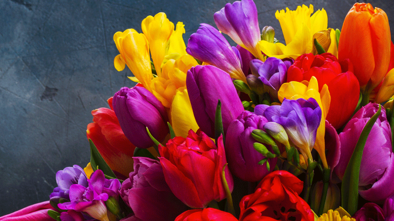 April's Best Deals: Spring Cleaning, Spring Planting and Tax Day