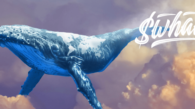 WhaleShark Says Social Tokens Will Boom After NFTs, Sees SEC Regs On Horizon