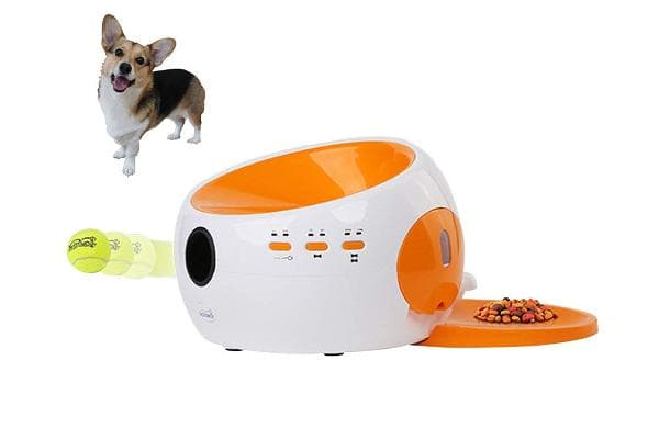 Automatic Ball Launcher for Dogs$269.99 plus shipping onAmazonKeep your dog obsessed all day while you're away. This ball launcher shoots a ball up to 16 feet, and will dispense a treat when the ball is returned.