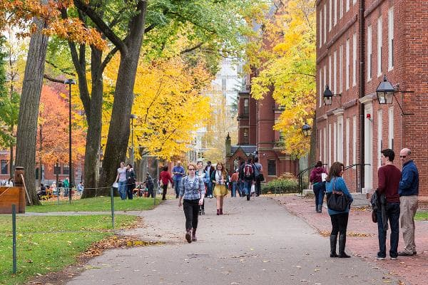 1. Harvard UniversityCambridge, Mass.Leading the pack is Harvard, a private Ivy League research university in Cambridge, Mass. Established in 1636, Harvard has produced 49 Nobel laureates, 32 heads of state and 48 Pulitzer Prize winners, according to Best Schools. It is famous for its leading medical, law, and business schools, the largest academic library in the world, and a long list of notable alumni, from John Quincy Adams and Theodore Roosevelt to Franklin Roosevelt, Hellen Keller, John F. Kennedy, Bill Gates, Benazir Bhutto, and Barack and Michelle Obama.Photo: Jannis Tobias Werner / Shutterstock