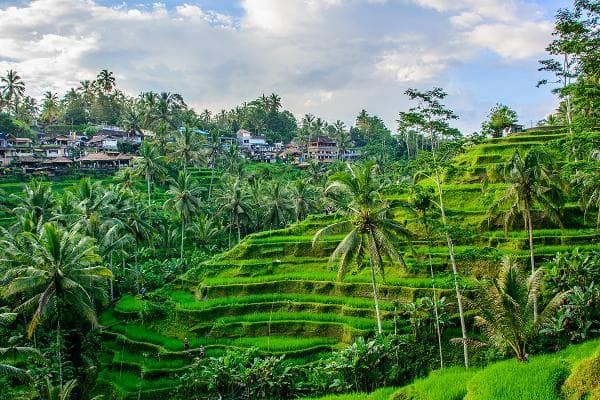 The Best Places to Visit in Asia1. Bali, IndonesiaThe tropical Indonesian island is loved for its volcanic mountains, rice paddies, beaches and coral reefs. Bali has the biggest Hindu population in Indonesia. Pictured is Canggu, Bali.Photo: Shutterstock