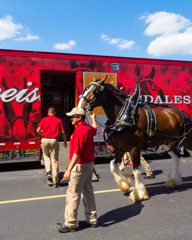 Craft Beer Sales Are Still Exploding And You Know That Just Irks the King of Beers Budweiser