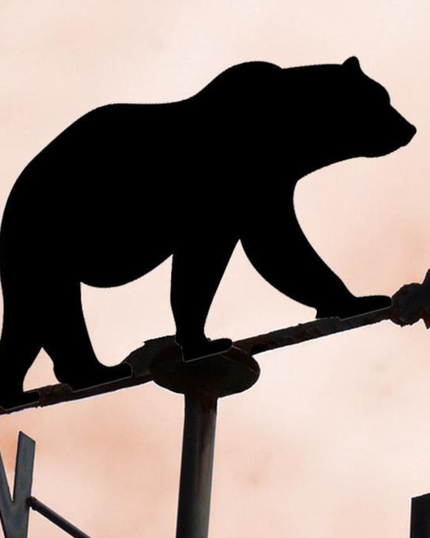 Weather Vane Bear Market Economy