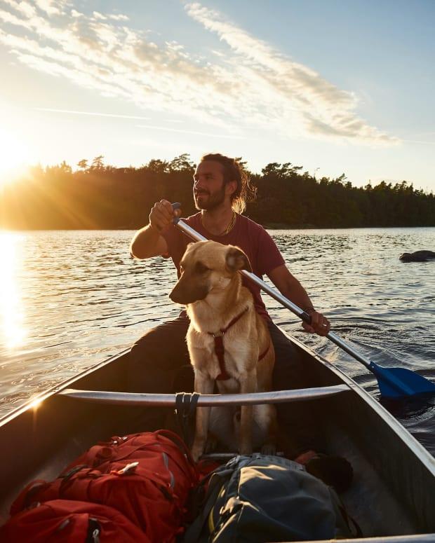 paddle canoe dog sh