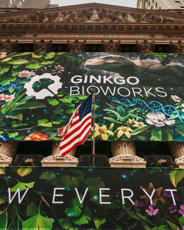 Ginkgo Bioworks Lead