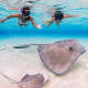 Grand CaymanSwim with stingrays, visit Seven Mile Beach, or taste rum at the Cayman Spirits Co. Distillery. Grand Cayman is the largest of the British Caymansterritory.Photo: Shutterstock