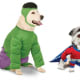 Super Hero: 2.7%There are plenty of ways to make your pooch the super hero of Halloween, such as this one from Petco, right. Or, deck your dog out in a Marvel Incredible Hulk costume for around $39 from BaxterBoo.Photos:BaxterBoo (left) Petco (right)