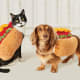 Hot Dog: 7.4%You read that right: 7.4% of Americans will dress their cat or dog in a hot dog costume. These are from Hyde and Eek! Boutique, and sold on Target for $10.39, possibly a fair price for a hot dog with all the trimmings.Photo: Hyde and Eek!Boutique/Target