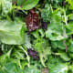 Vegetable Row Crops (Leafy and Stem Vegetables)Illnesses: 1,972Outbreaks: 81The leafy vegetables accounted for 77 of the outbreaks, stem vegetables for four.Photo: Shutterstock