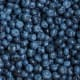 New JerseyHighbush blueberryNew Jersey ranks second in the nation in blueberry cultivation. The northern highbush blueberry, Vaccinium corymbosum, is native to eastern Canada and the eastern and southern U.S. It has significant economic influence, as well as significant muffin and pie influence.Photo: Shutterstock