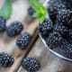 KentuckyBlackberry Blackberries in Kentucky are traditionally sold at farmers markets, roadside stands and at U-Pick farms, according to the Center for Crop Diversification at the University of Kentucky. They are often made into wine.Photo: Shutterstock