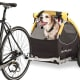 Burley Tail Wagon Pet Bike Trailer/Stroller$399 at REIDon't leave the pooch behind when you go on a bike ride. The Burley Tail Wagon (Tail Wagon -- get it?) includes a tow arm and hitch so you can attach it to your bike and take your furry passenger for a tour.Photo: REI
