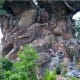6. Disney's Animal Kingdom at Walt Disney WorldLake Buena Vista, Fla.2017 attendance: 12.5 million Above, the Tree of Life sculpture at Animal Kingdom is 145 feet tall and 50 feet wide at its base,and features over 300 animal carvings throughout its trunk, roots and branches.Photo:  © BrokenSphere / Wikimedia Commons