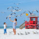 Sarasota, Fla.There are plenty of beaches in Sarasota. At Casey Key, there are picnic areas, concession stands, and on-duty lifeguards that make it attractive to families year-round.Photo: Shutterstock