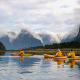 New Zealand: 28.7%Above, kayakers on Milford Sound, New Zealand.Photo: Shutterstock