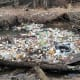 20. DiapersTotal count: 6,467Percent of all plastics found: 0.3%Type of plastics: Several different plasticsAlternatives: Plant‑based biodegradable alternatives; cloth diaper services when availableAbove, volunteers found this trash, including diapers, in Little Hunting Creek in Fairfax County, Va.Photo: Fairfax County, Va.