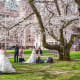 14. SeattleCosts Rank: 125Facilities and Services Rank: 10Activities and Attractions Rank: 9Above, brides pose under the cherry blossoms at the University of Washington in Seattle.Photo: oksana.perkins / Shutterstock