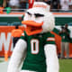 6. MiamiPro Football Rank: 8College Football Rank: 7Miami is home to the Dolphins and the University of Miami Hurricanes.Photo: Ryan Jelloo / Shutterstock