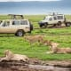 Here are more of the top things to do on your visit to Africa, suggested by Africa.com.Bush-to-Beach SafariIn one trip you get the best of both worlds. Take off on one of these bush-to-beach trips from Tanzania, Mozambique, Kenya, Namibia, Madagascar, or South Africa. See a variety of wildlife on an inland safari, such as lions, cheetahs, elephants, zebra, giraffes, hippos and wildebeest. Above is Ngorongoro Crater National Park in Tanzania.Afterward, you'll head to a beautiful tropical beach on the coast where you can swim, surf, fish, or just relax.Photo: Shutterstock