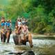2. ThailandAbove, tourists ride elephants near Chiang Mai, Thailand.Photo: Cocos.Bounty / Shutterstock